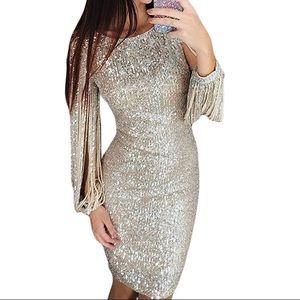 Women's sequin long sleeve tassel dress, silver
